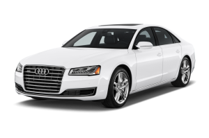 Fleet Exclusive Car 1-4 PAX: Audi A8 or similar