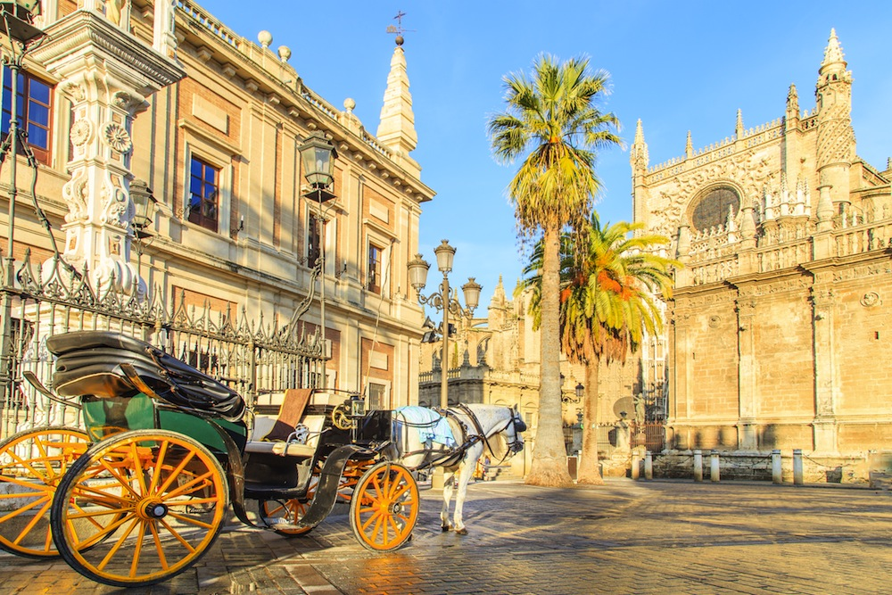 imagen transfer to Seville from Malaga Airport
